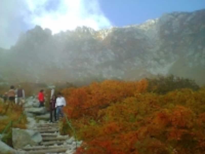 千畳敷カールの紅葉・黄葉(2)/中央アルプスの稜線と共に