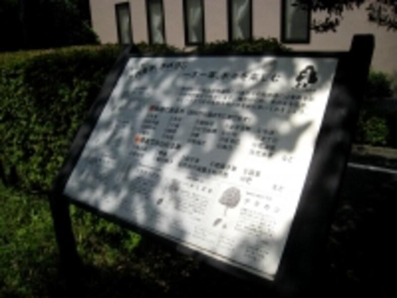緑道の標識
