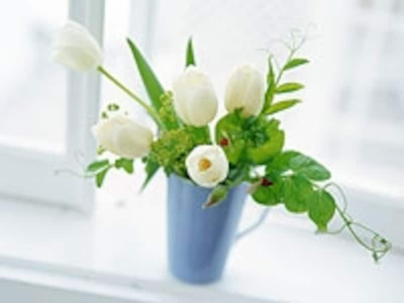 花瓶に活けたチューリップ