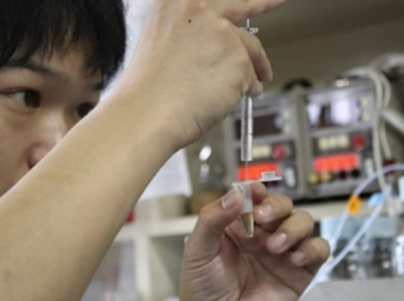 抽出した紅茶を高速液体クロマトグラフィー(HPLC)で測定するため、必要量を採取