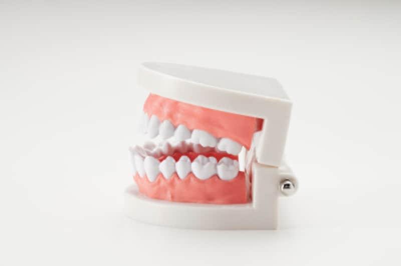歯がぐらつく場合の固定法・治療法