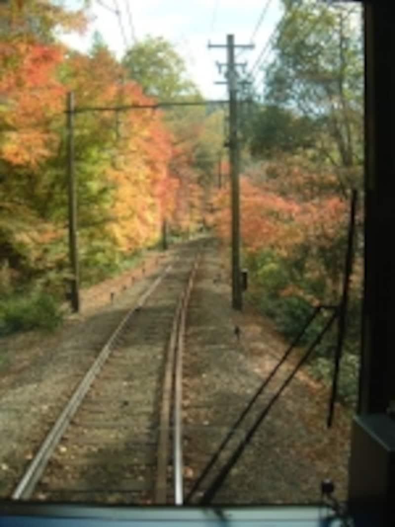 叡山電車で通り抜ける紅葉のトンネル