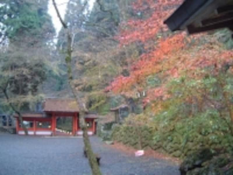 貴船神社・奥宮の紅葉