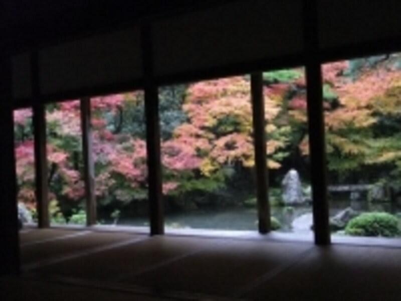 蓮華寺の紅葉(2)