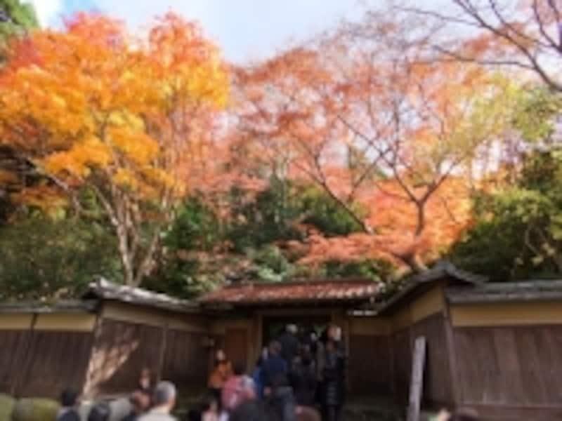 八瀬・瑠璃光院の紅葉