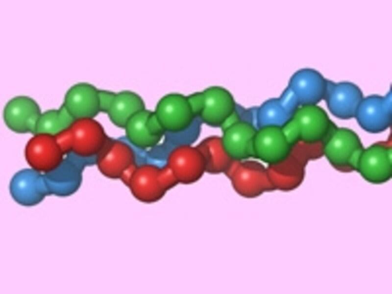 3種類のアミノ酸が3重螺旋につながります