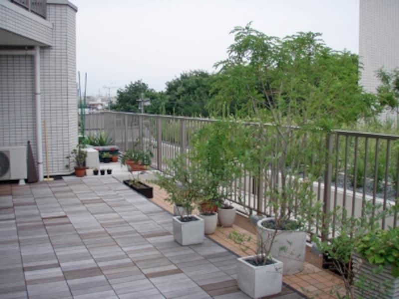ルーフバルコニーでガーデニングを楽しむ。床にはウッドデッキを敷いてプランターで植物を育てている。