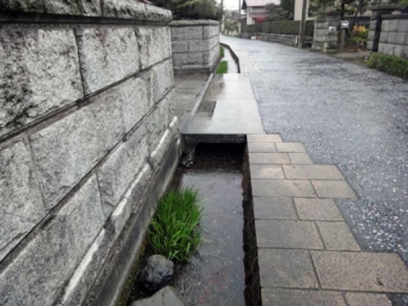 敷地脇の水路