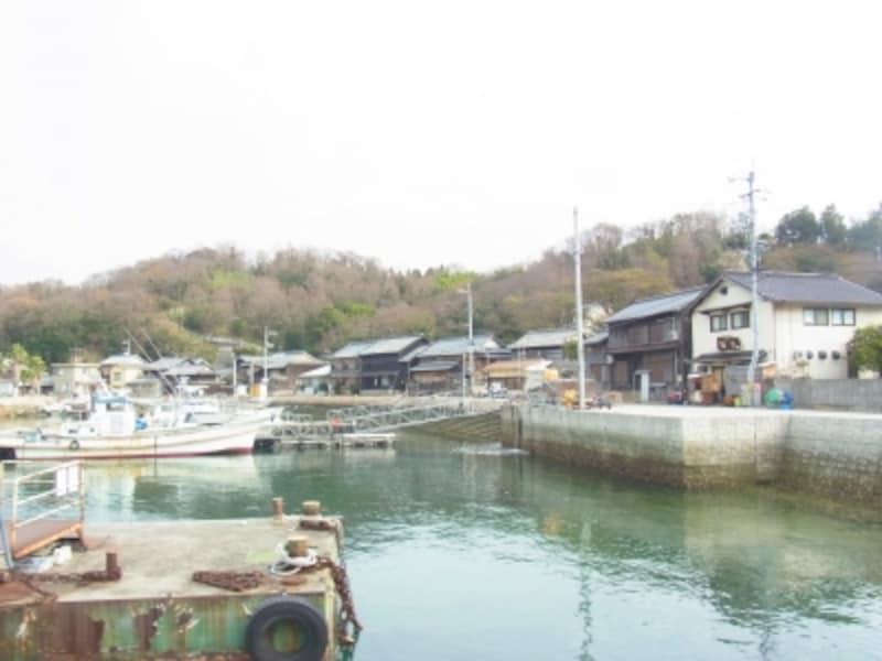 漁火の目の前は港