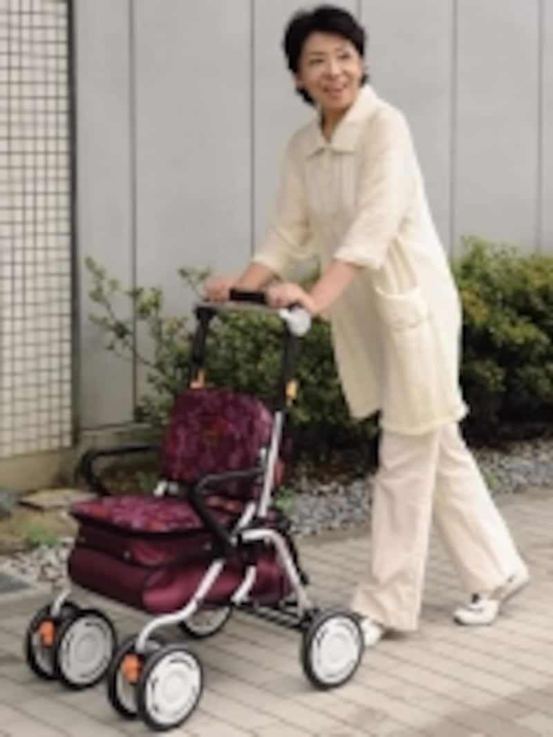 スタンダードタイプは、歩行時の安定性が高く、収納力も豊富です