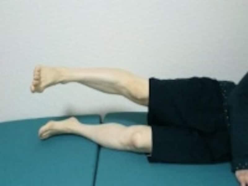 下肢を持ち上げるだけで、脚の重さがズシっと感じられる人も