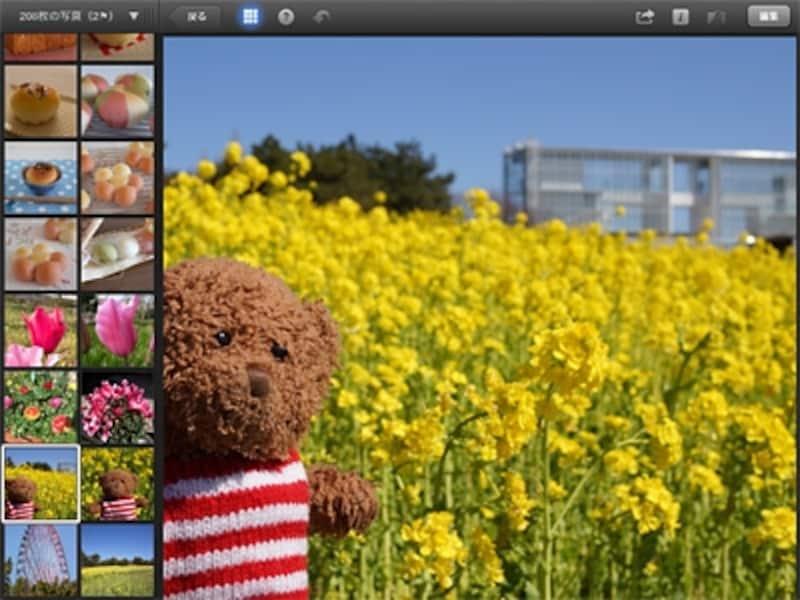 iOS版iPhoto(図はiPad)の編集画面