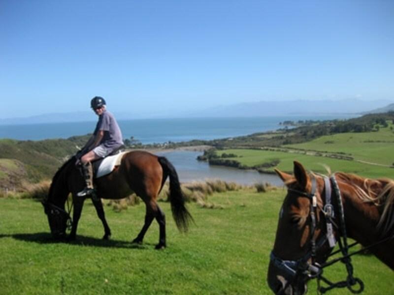 大自然の中楽しむニュージーランドの乗馬