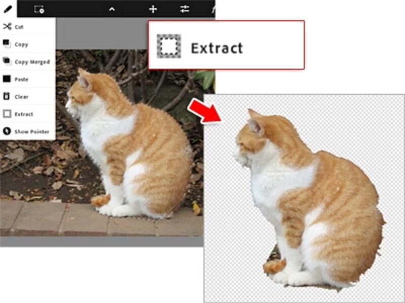 選択範囲外を透明にする「Extract(選択範囲外を消去)」