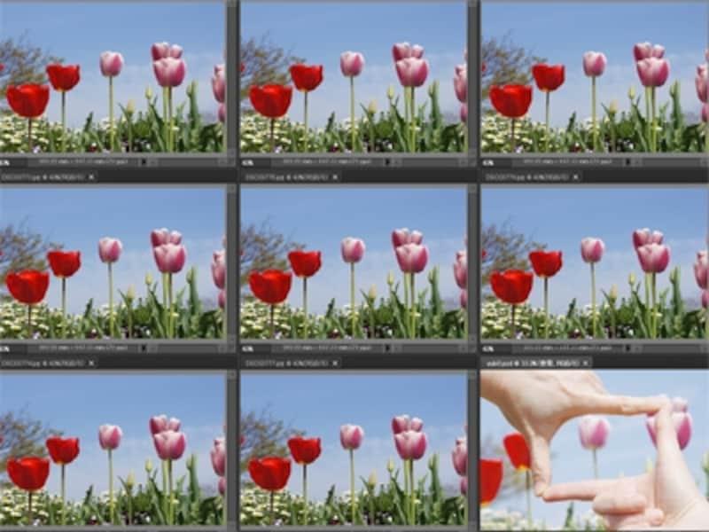 8枚の連続写真と1枚の指フレーム写真