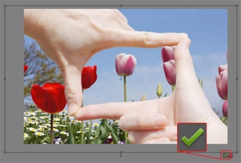 手を貼り付けて位置と大きさを調整し「確定」をクリック