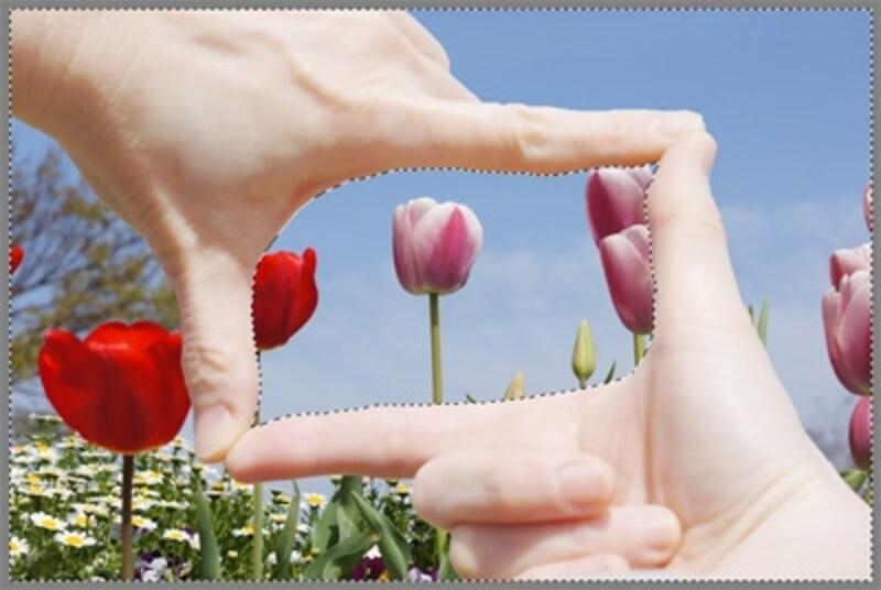 指とその外側は1番目の写真で、指の内部だけ2番目の写真が残っている