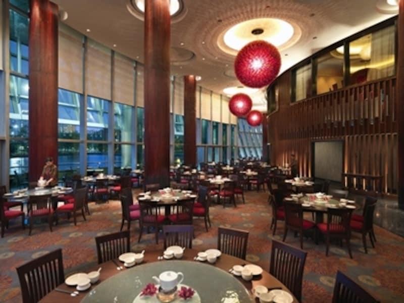 数多くの点心をお手頃価格で楽しめる広東料理レストラン「トレジャー・パレス」(c)CityofDreams