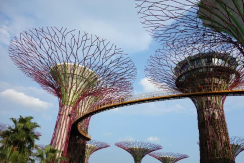 シンガポール「ガーデンズ・バイ・ザ・ベイ」