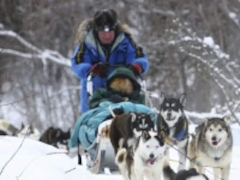犬ぞりに乗っている間は毛布に分厚い包まります。でも寒い!(C)GovernmentofYukon