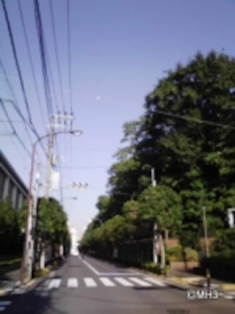 文京区本駒込6丁目、通称「大和郷(やまとむら)」