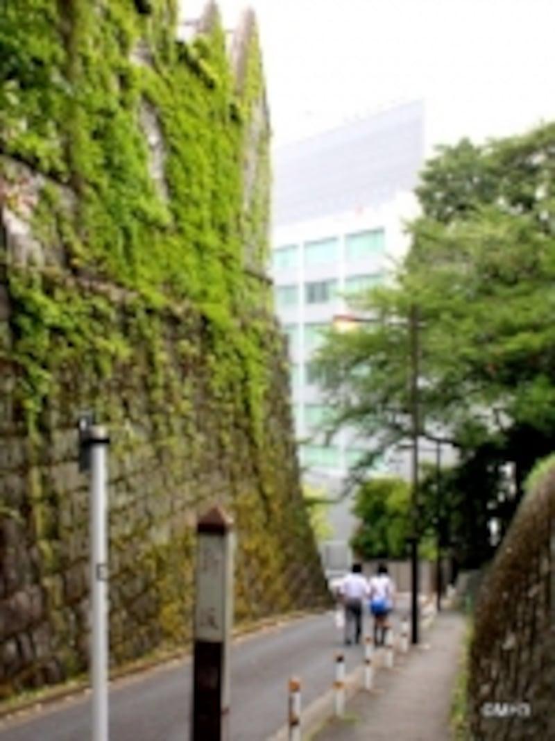 「日比谷高校」横の新坂。下っていくとレジデンスの入口がある。