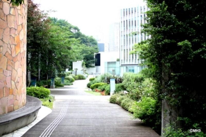 「日比谷高校」と「プルデンシャルタワー」の間には、こんな緑豊かな公開空地が設けられている。
