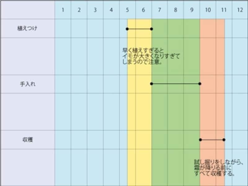 サツマイモの栽培スケジュール