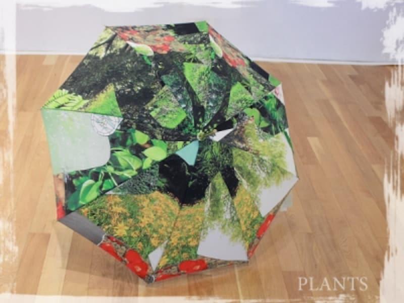世界にひとつだけのアートな日傘