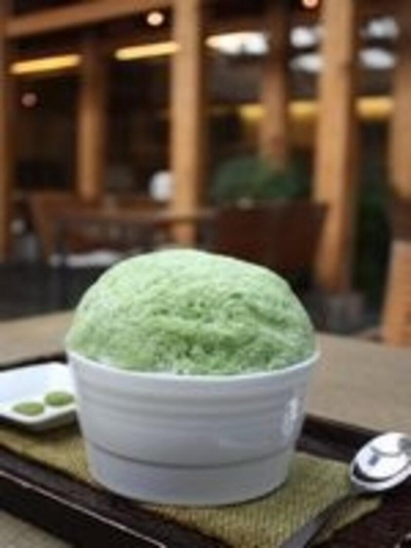 夏に大人気のノクチャビンス。暑い日にはカキ氷の冷たさが嬉しい!(C)TeastoryofBeautifulTeaMuseum
