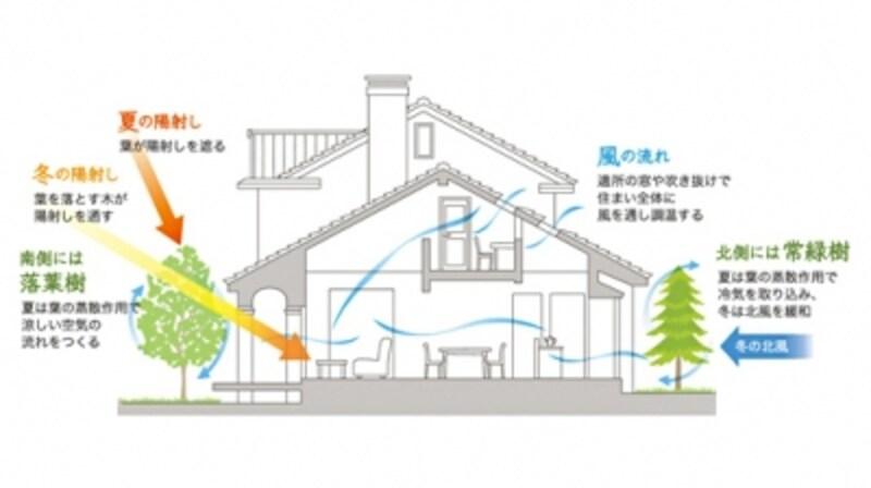 敷地の特性を読み、住まい全体で光を調整し、風の流れや植栽の配置を計画して中庭を設ければ、自然の恵みをより有効に活用できる