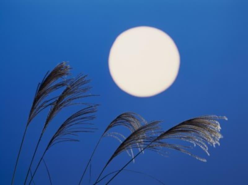 日本人が月に寄せる思いは深いのです
