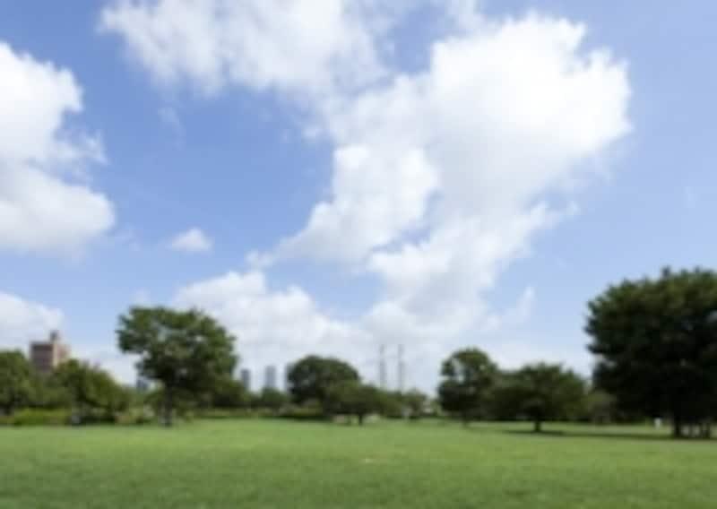 木場公園(徒歩9分・約690m)