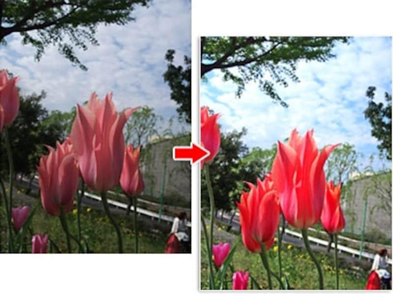 補正前(左)と補正後の写真