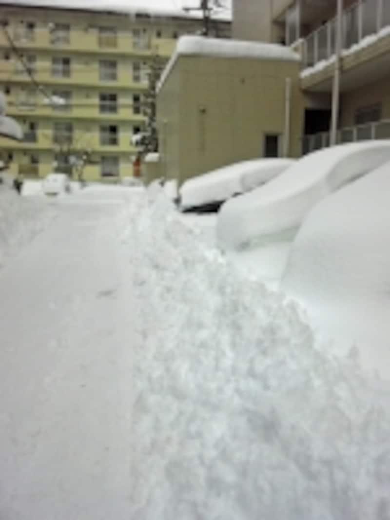 雪が降った翌朝は一面の銀世界になる