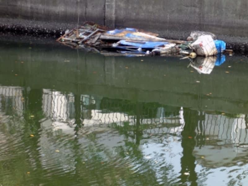 ゴミが溜まった川