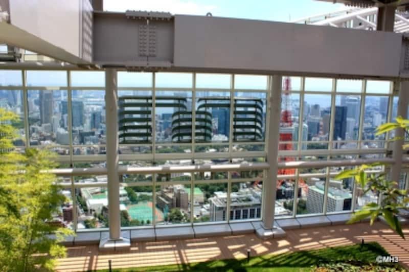 「アークヒルズ仙石山森タワー」のスカイデッキ。扉を開けて、目に飛び込んでくるのは眼下に広がる東京の景色。