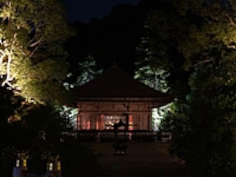 ライトアップされた樹木によって浮かび上がる阿弥陀堂