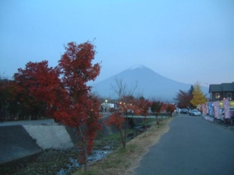 河口湖猿まわし劇場近くの紅葉と富士山