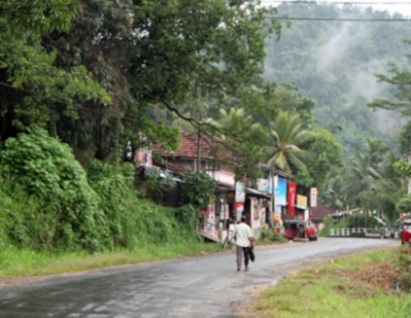 サバラガムワにて。ローグロウンエリアの紅茶工場に向かう途中