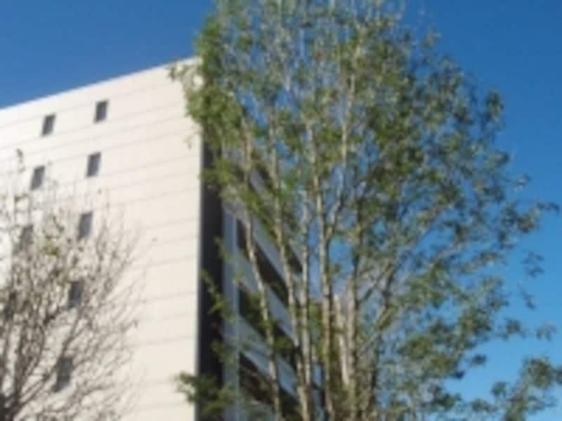 オハナ平塚桃浜の外観