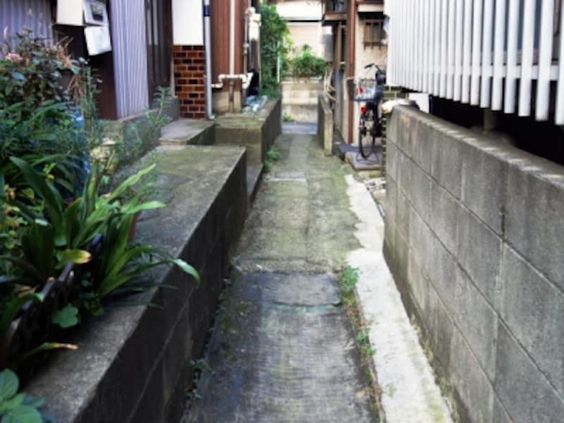 住宅密集地の青道、あおみち