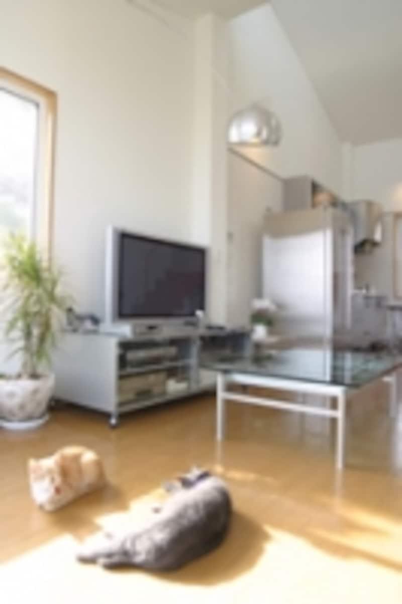 家の中に、1人になれる場所がありますか。