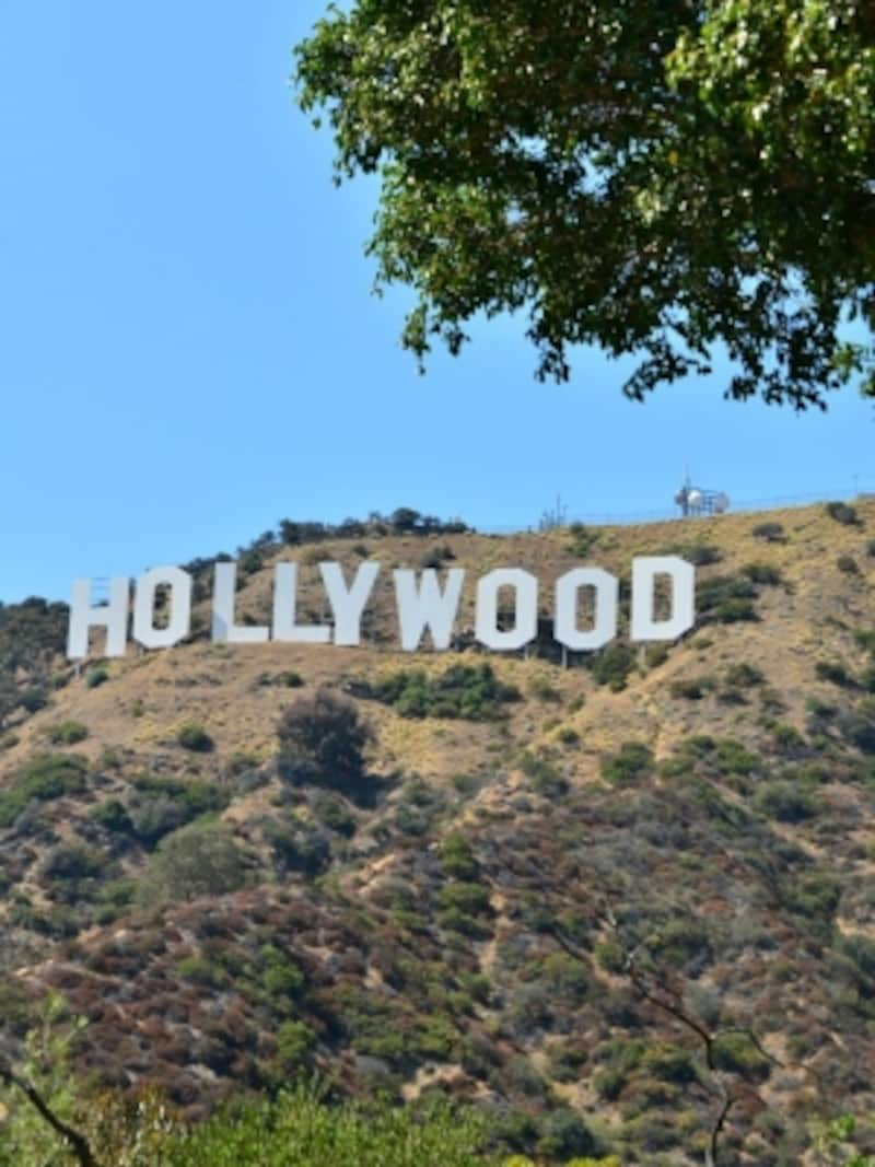 実は、ロサンゼルスのどこからでも見えるハリウッドの看板