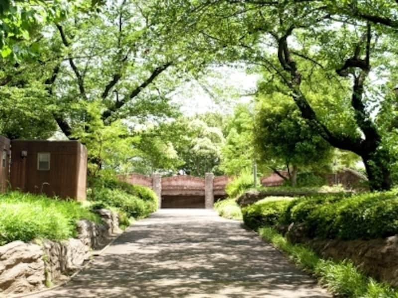 大森貝塚遺跡庭園(徒歩4分/約300m)undefined※平成23年7月撮影