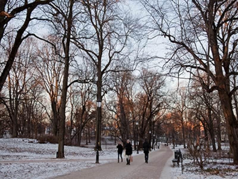 ノルウェー王宮公園