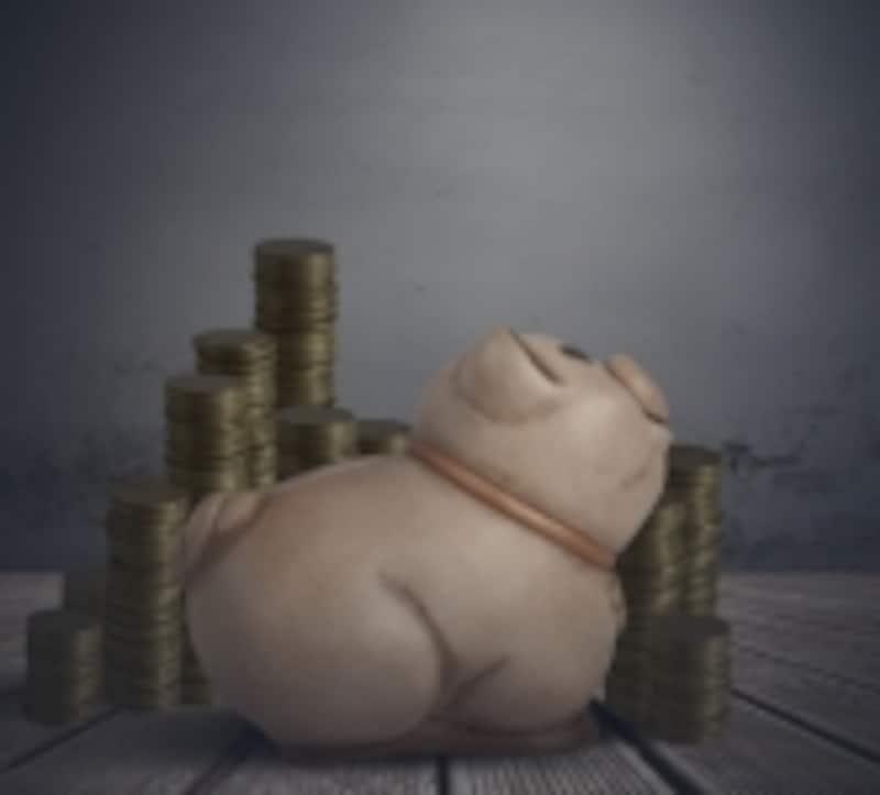 お金がお金を生む分配金生活