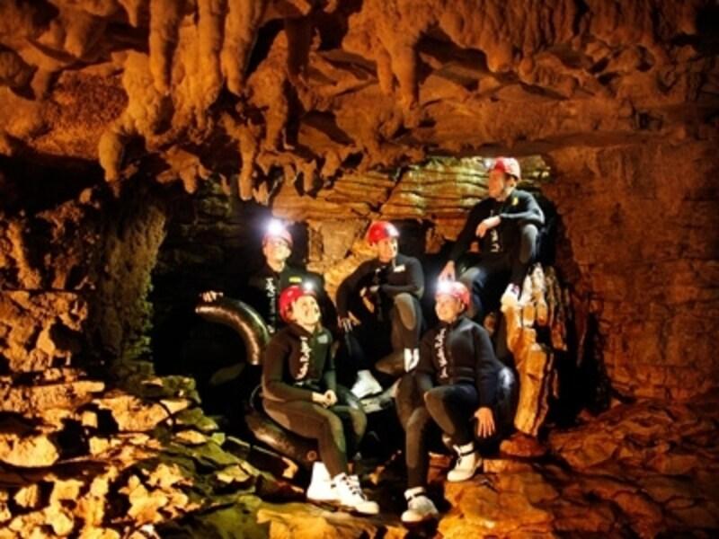 ワイトモでは珍しいツチボタルを観察したり、洞窟探検アドベンチャーを体験できる