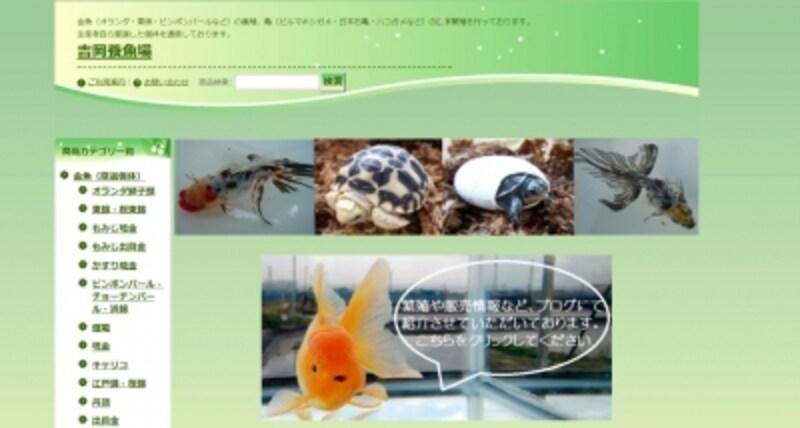 吉岡養魚場通販サイト