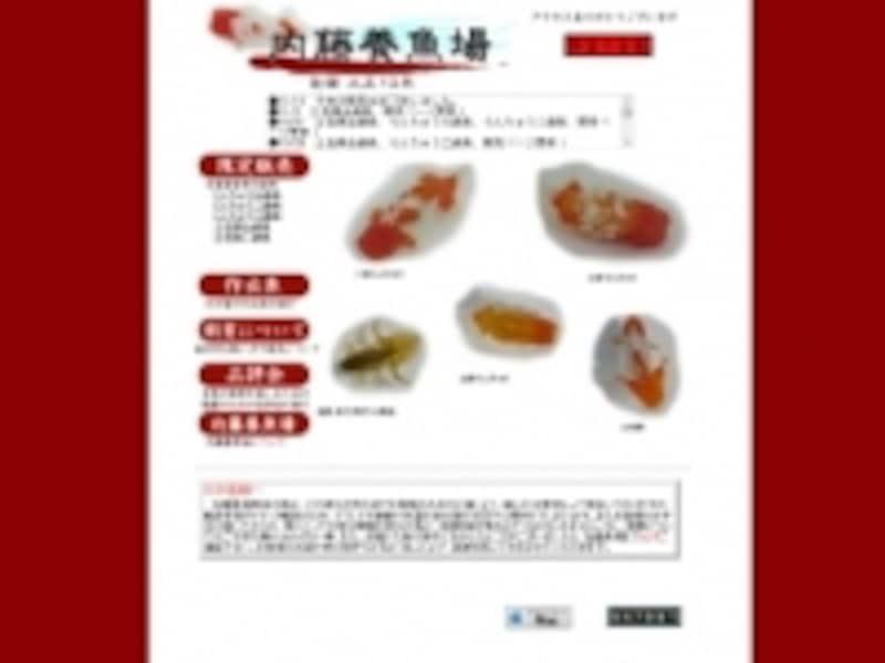 内藤養魚場通販サイト
